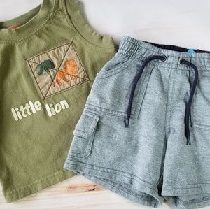 Gymboree Baby Boy Safari Lines Summer Outfit 3-6m